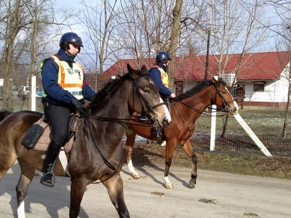 lovasrendőrök